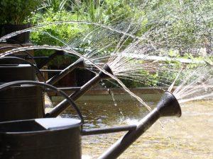 Sculpture eau évenementiel. jeux d'eau