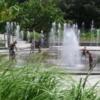 fontaine et jardin